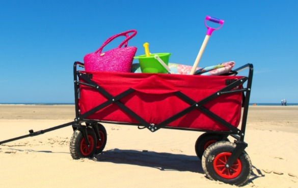 beach cart on the beach | Williamson Realty