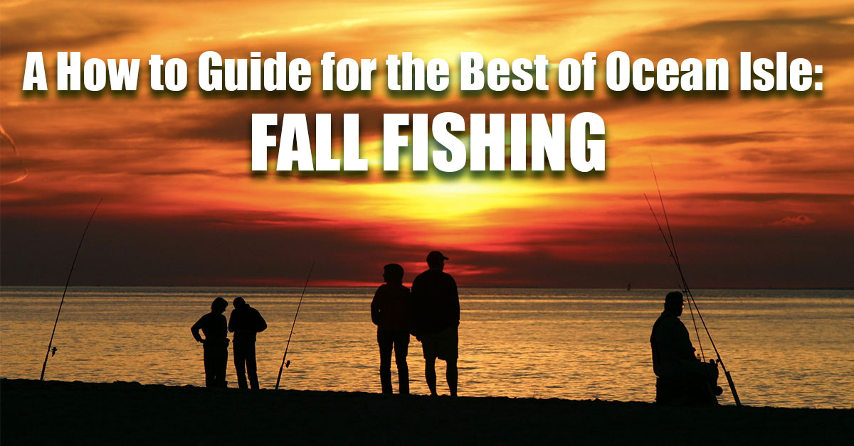 A How to Guide for the Best of Ocean Isle: Fall Fishing