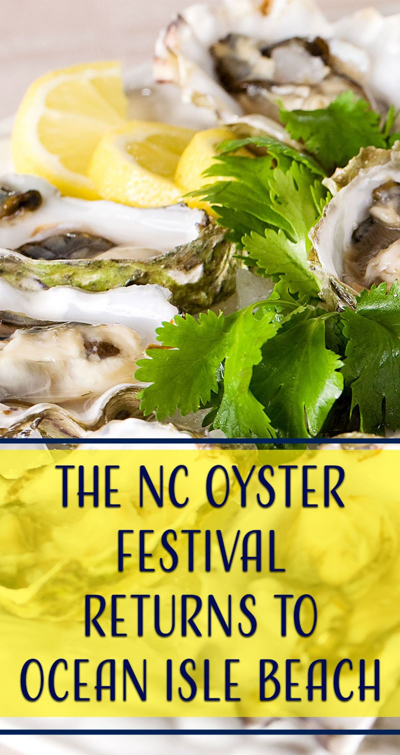 Oyster Festival Pin