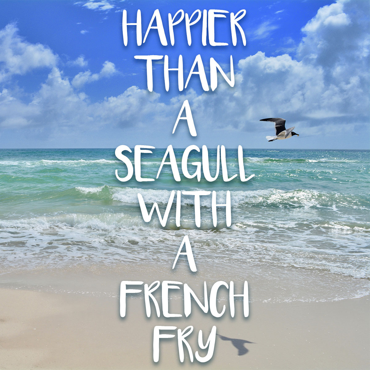 Happier Than A Seagull With French Fry