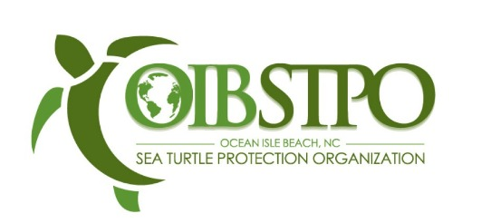 OIB Sea Turtles