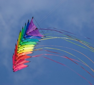 rainbow colored kite flying | Williamson Realty