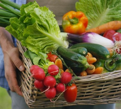 fresh vegetables | Williamson Realty