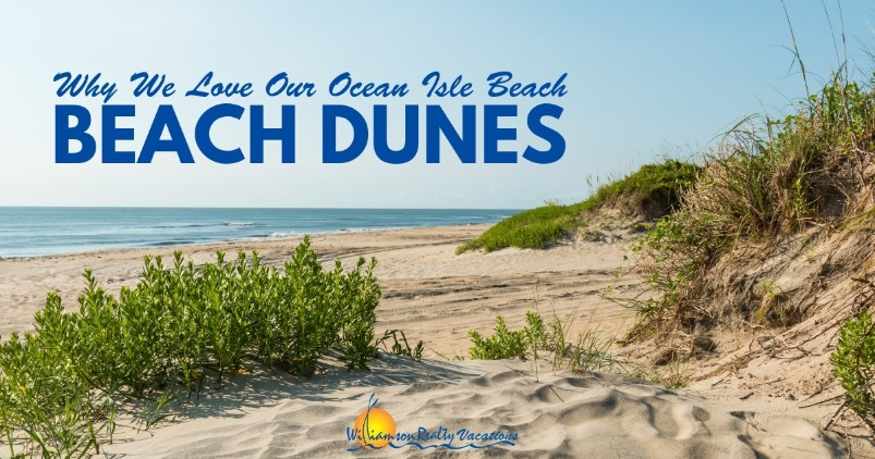 Why We Love Our Ocean Isle Beach Beach Dunes | Williamson Realty Vacations