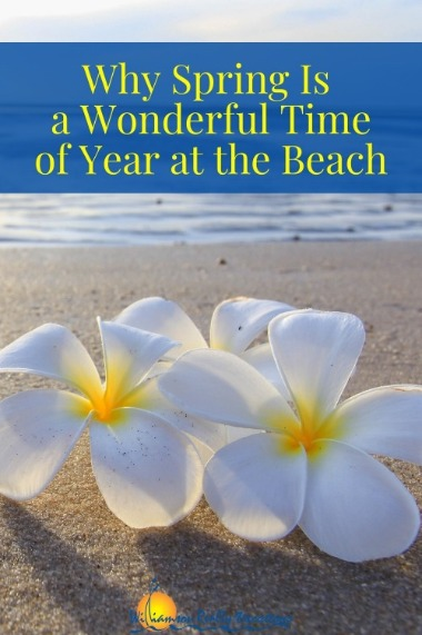 Why Spring Is a Wonderful Time of Year at the Beach